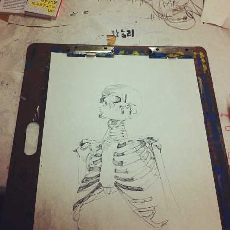 Skeleton Still Life Drawing